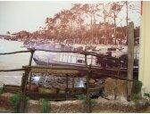 Cổ vật từ các dòng sông Nam bộ (10/12/2008)